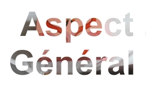 aspect g